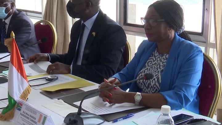 Fin des travaux de la première session de la commission mixte de coopération CI - Afrique du sud