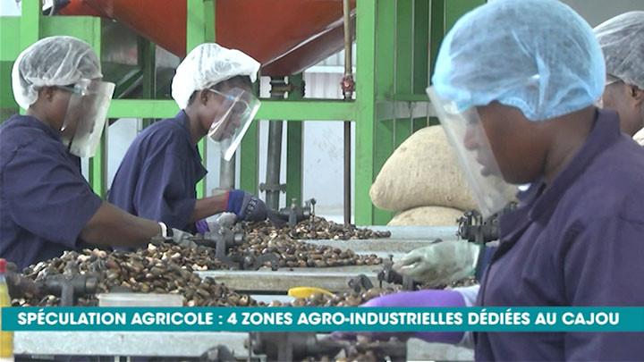 Filière cajou: bientôt la construction de zones agro-industrielles